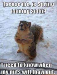 I wish we knew, little guy :-(