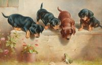 Curious_dachshund_puppies_and_a_frog