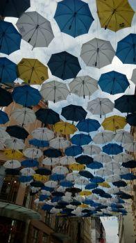 Deštníky na České Brno