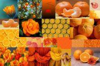 Orange Fantasy