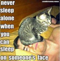 Never Sleep Alone....