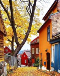 The Path Down into Town -- Bergen, Norway....