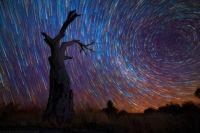 Star Trails 44
