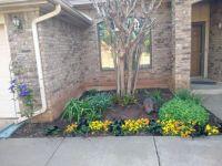Nephew's front flowerbed