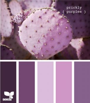 PricklyPurple
