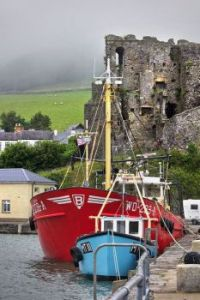 Castle at Carlingford Harbour, County Louth, Ireland