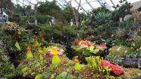Indoor Garden, Singapore