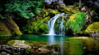 2  ~   'Waterfall between soft cushions of moss'