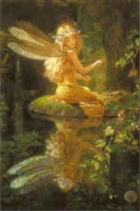 Fairy Reflection