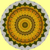 kaleidoscope 347 yellow mandala medium