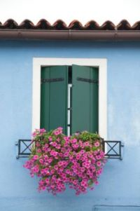 Burano Window 2