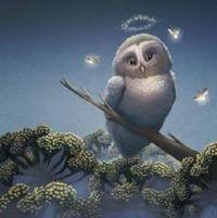 Heavenly Owl