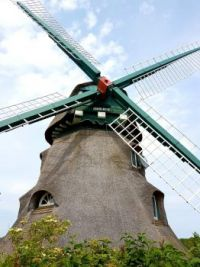 Windmill Charlotte