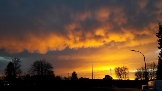 Mammatus clouds glowing in the sunset