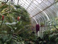 Seymour Conservatory, Tacoma, WA, USA