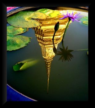 Reflection pool - Lotus & Temple - Thailand.