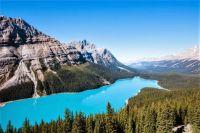 Lake Peyto - Banff Alberta - Canada