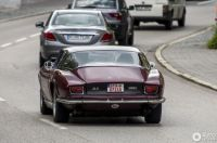 iso grifo can-am