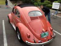 Beetle Ragtop Oval window