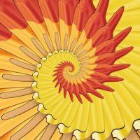Spiral 06 Medium