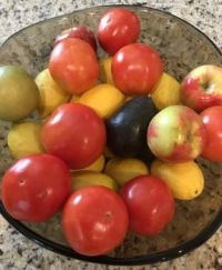 Today's Fruit Bowl