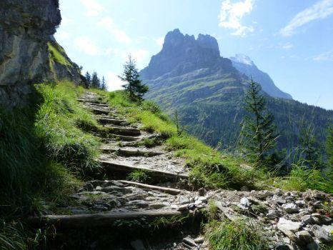 (33) the descent