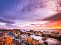 Bay of Fire