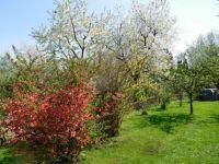Už se těším na jaro...