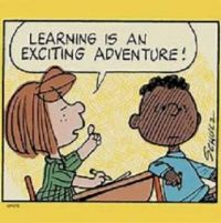Learning is...