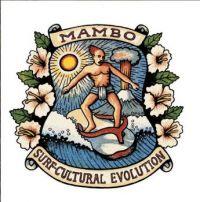 Surf-Cultural Evolution