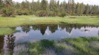 Skookum Creek, Washington State DNR campground
