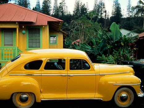 Yellow car, yellow house.