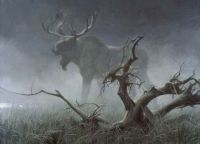 Moose in fog