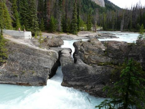 Kicking Horse River and Natural Bridge