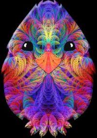 Rainbow Split Feather Chicken Little