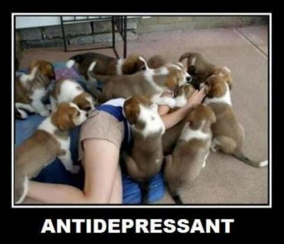 The perfect antidepressant