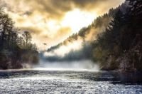 McKenzie River Morning