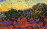 Olive Grove, Orange Sky