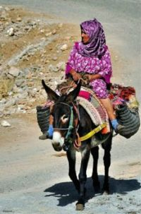 Moroccan woman riding a mule