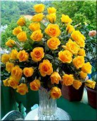Bouquet #85