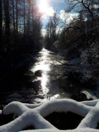 Winter sunshine on Boundary Creek