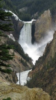 Canyon Falls of Yellowstone