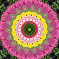 kaleidoscope 316 pink and yellow very large