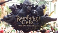rainforest cafe San Antonio Texas