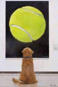 Tennis ball envy