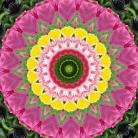 kaleidoscope 316 pink and yellow medium