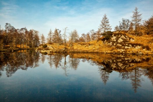 Reflections upon a Tarn.