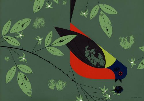 Charley Harper Bird and Berry