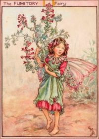 The Fumitory Fairy
