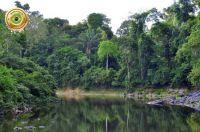 Brasil - Amazônia 12